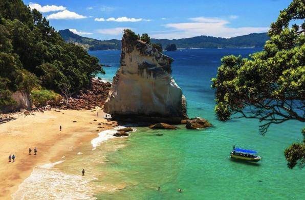 nuevo producto recogido Precio reducido Vuelos a Nueva Zelanda