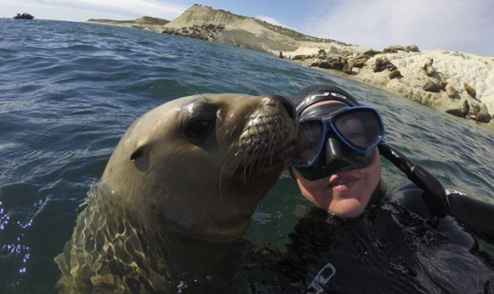 Buceo Argentina