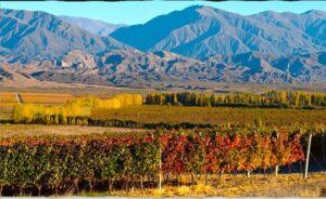 La renovada ruta del vino en Mendoza: las 4 bodegas para visitar en una escapada de vacaciones
